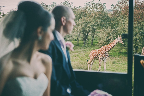 Port Lympne Hotel and Reserve - Venues - Nr Ashford - Kent