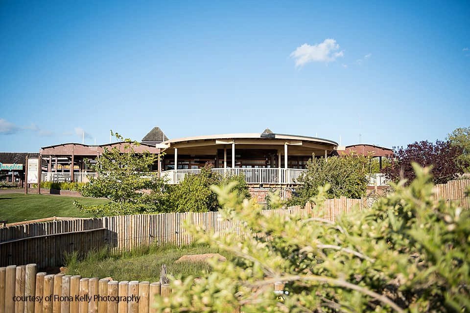 The Safari Lodge at Woburn Safari Park-Image-11