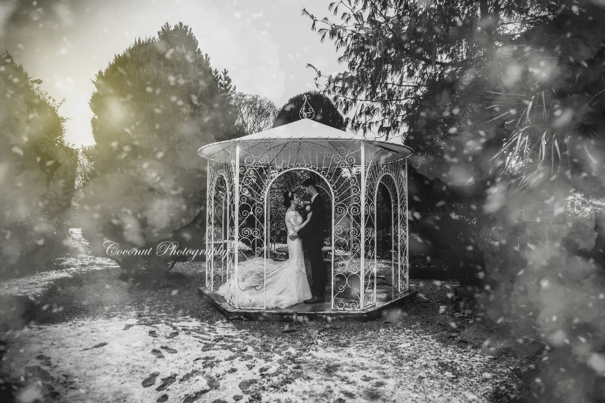 Coconut Photography LTD-Image-133