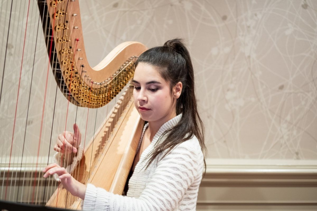 The harpist performing background music during Laura and Steve